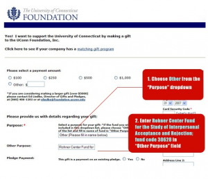 "Choose Other Form from ""Purpose"" Drop-down menu. Enter Rohner Center (Fund Code: 30628)"